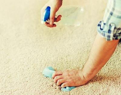 Carpet Blotting