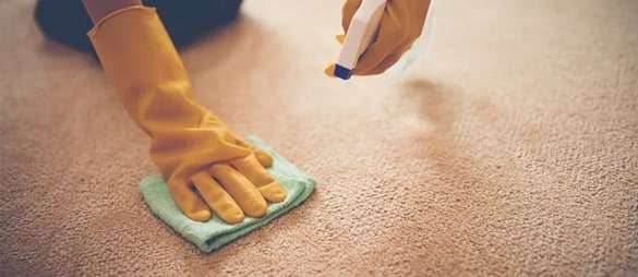 Carpet Stain Removal Services 1