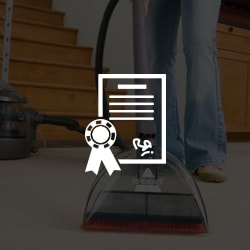 Certified And Licensed Carpet Cleaning Services