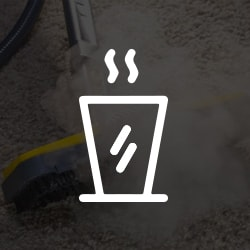 /Hot Water Carpet Cleaning Services