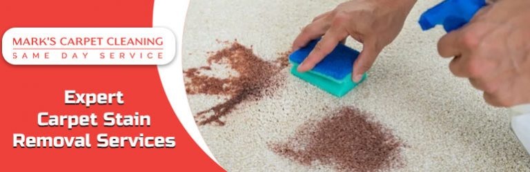 Carpet Stain Removal Service