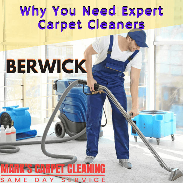 Why You Need Expert Carpet Cleaners-Marks carpet cleaning in Berwick
