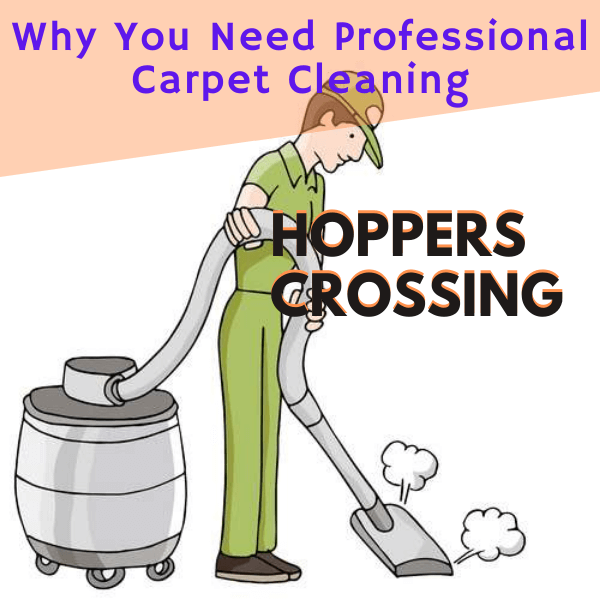 Why You Need professional carpet cleaning-Marks carpet cleaning in Hoppers crossing