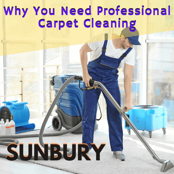 Why You Need professional carpet cleaning-Marks carpet cleaning in Sunbury