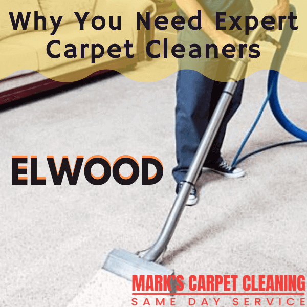 Why You Need Expert Carpet Cleaners-Marks carpet cleaning in Elwood