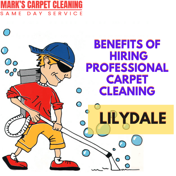 Benefits of hiring Marks carpet cleaning Lilydale