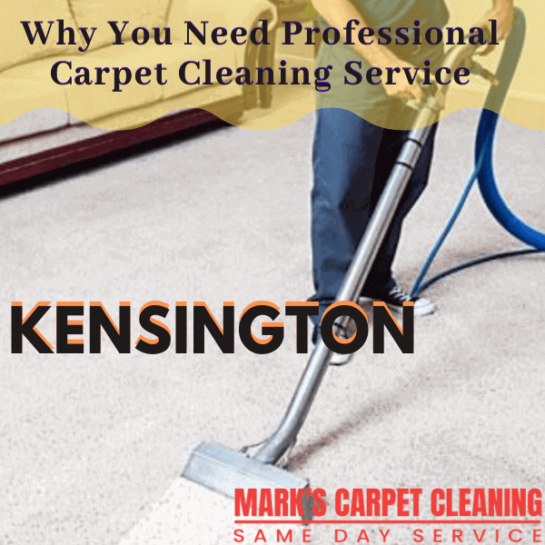Why You Need Professional carpet cleaning service-Marks carpet cleaning in Kensington