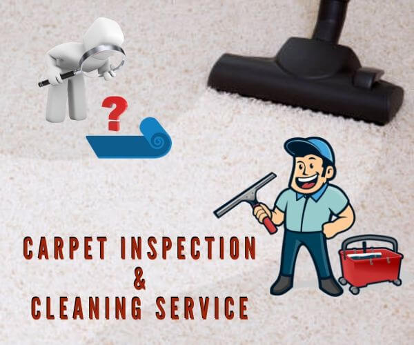 carpet cleaning service Wallan