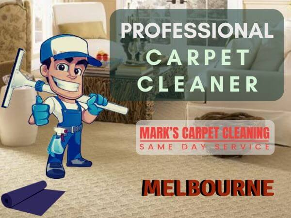 professional carpet cleaner Templestowe