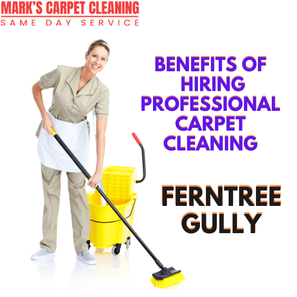 Benefits of hiring Marks carpet cleaning Ferntree Gully