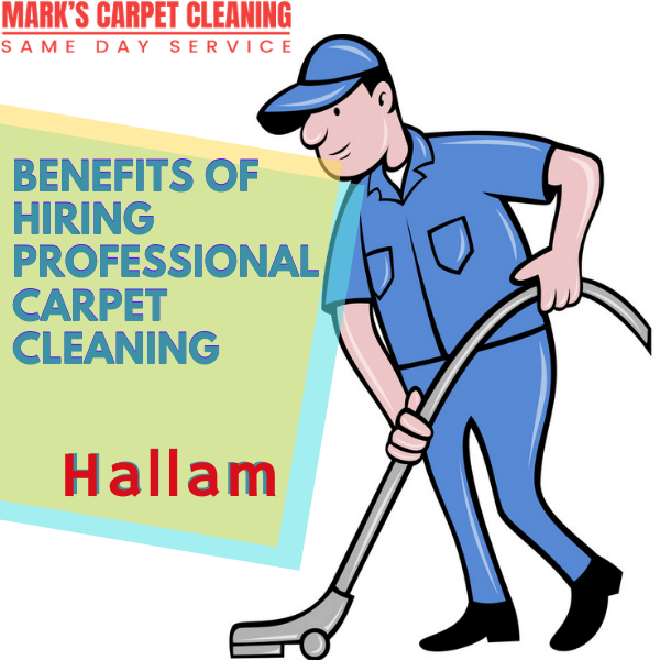 Benefits of hiring Marks carpet cleaning Hallam