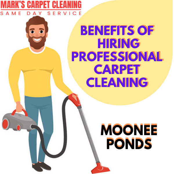 Benefits of hiring Marks carpet cleaning Moonee Ponds