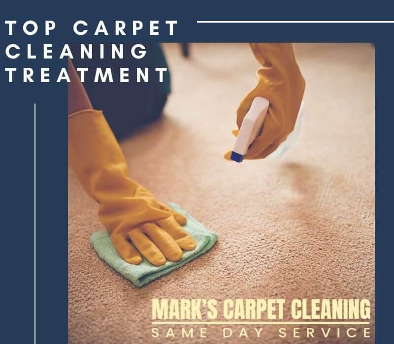 Best Carpet Cleaning Treatment