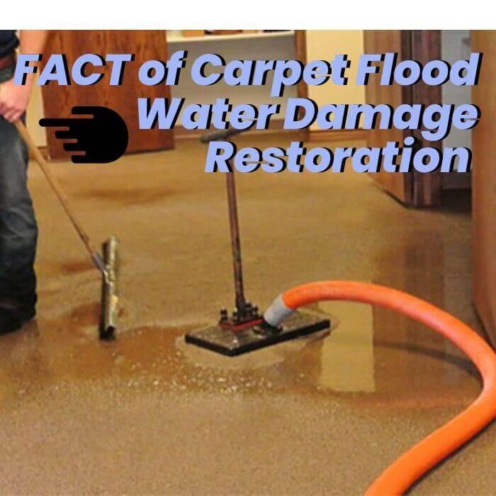 flood damage restoration brisbane fact