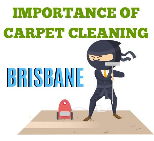 importance of carpet cleaning brisbane
