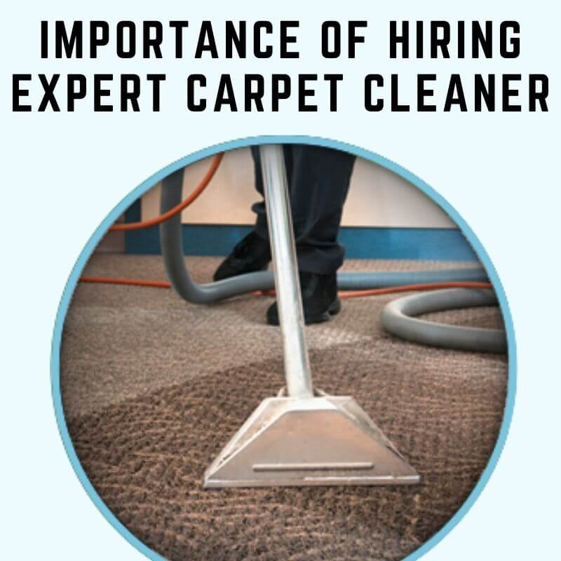 Importance of Carpet Cleaning