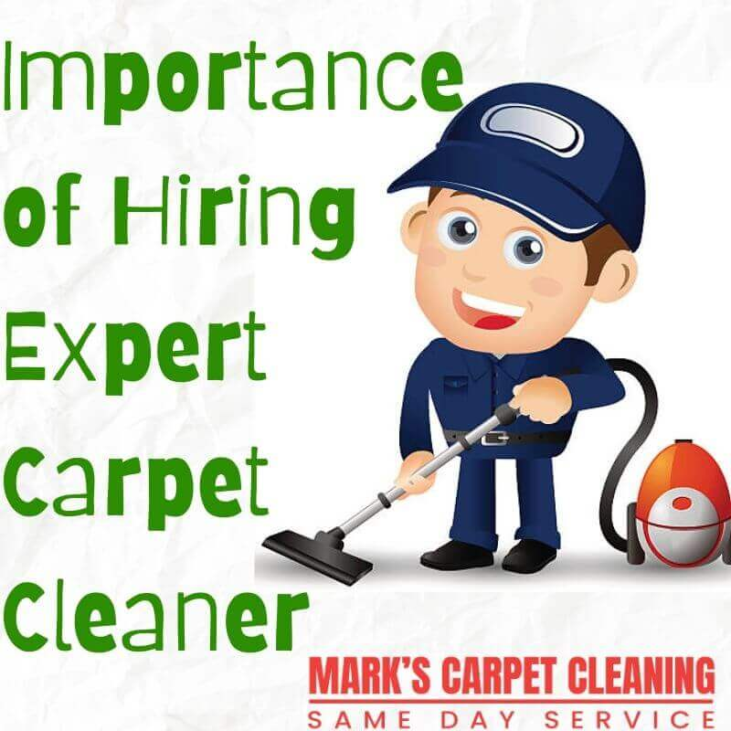 Importance of Hiring Expert carpet Cleaner