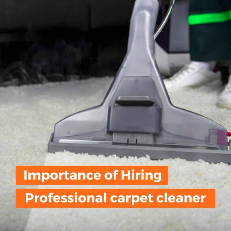 Importance of Hiring Professional Carpet Cleaner