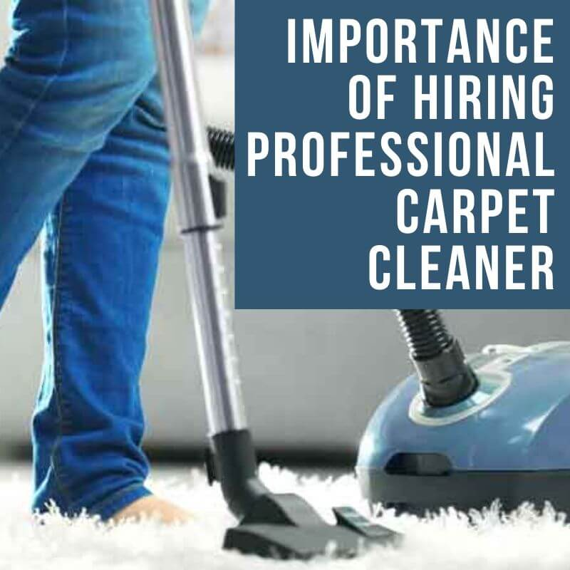 Importance of Hiring Professional Carpet Cleaning