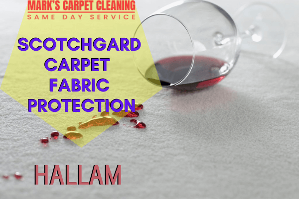 Marks Scotchgard Carpet Fabric Protection in Hallam
