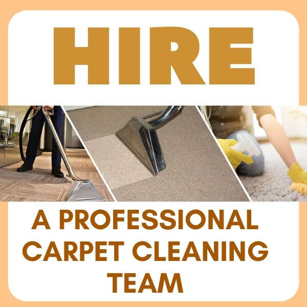 Professional Carpet Cleaning Team