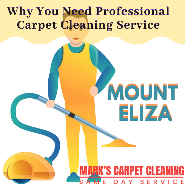 Why You Need Marks Expert Carpet Cleaning service in Mount Eliza