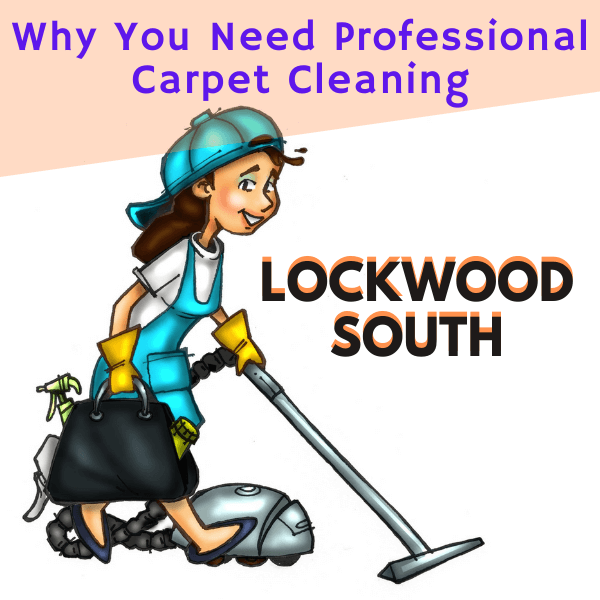 Why You Need Professional Carpet Cleaning Service-Marks Carpet Cleaning in Lockwood South