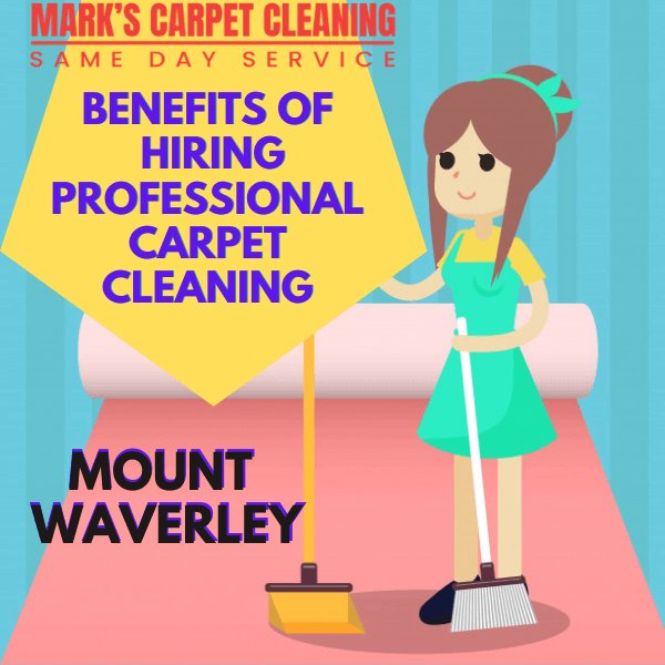benefit of hiring Marks carpet cleaning Mount Waverley