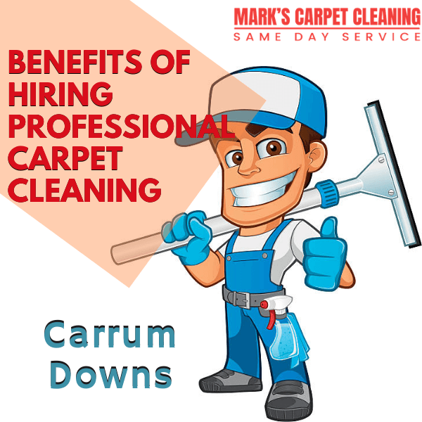 benefits of hiring marks carpet cleaning Carrum Downs