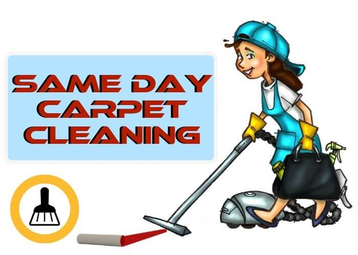 same day carpet cleaning