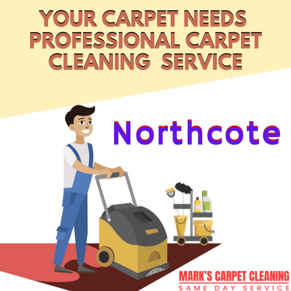 why you need Marks professional carpet cleaning service in Northcote