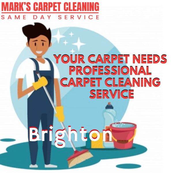 why you need expert carpet cleaning-Marks carpet cleaning in Brighton