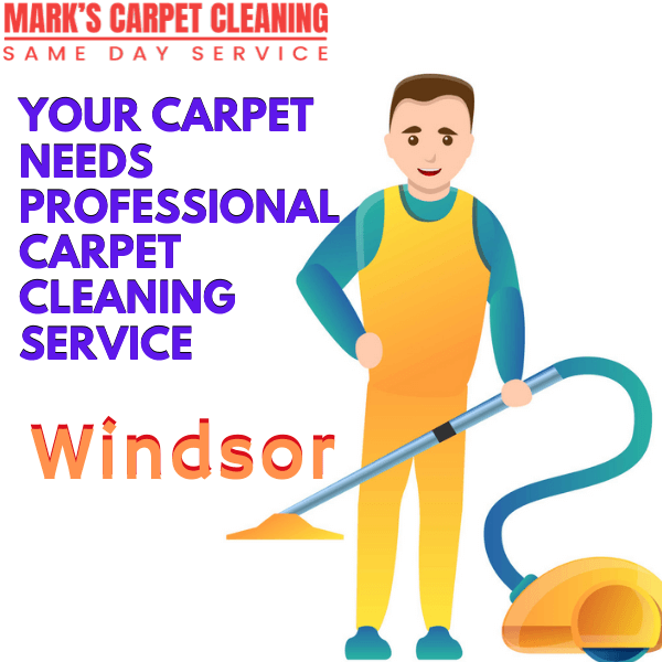 why you need expert carpet cleaning-Marks carpet cleaning in Windsor