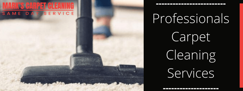 Professionals Carpet Cleaning Services