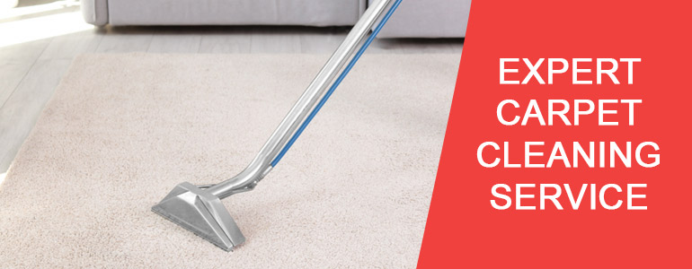 Expert Carpet Cleaning Service