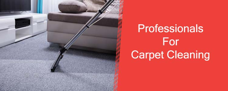 Professionals for Carpet Cleaning